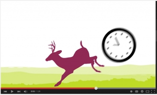 Bringing the stag to life in the Exmoor animated video.
