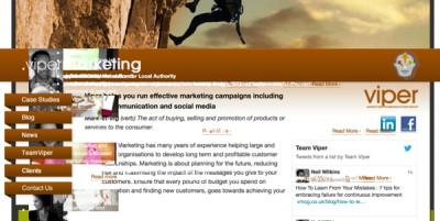 Viper Marketing 2010